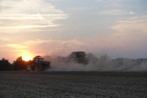 Traktor_Staubfeld2